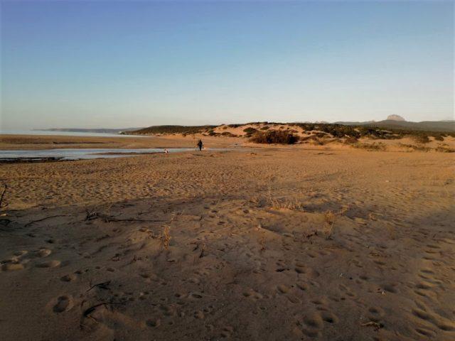 spiaggia-di-piscinas-sul-cammino-minerario-di-santa-barbara