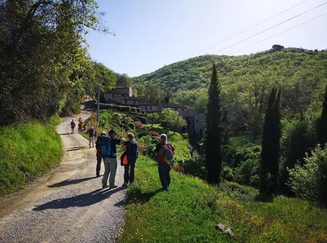 cammini-via-romea-del-chianti-trekking-italia-viaggi-a-piedi