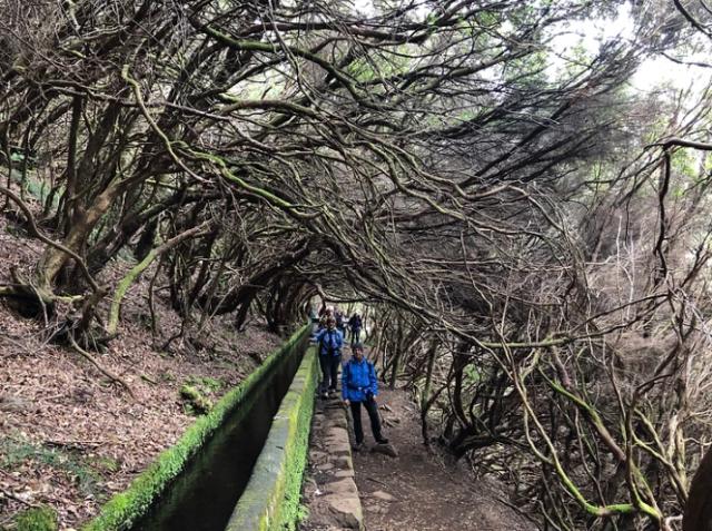 trekking-isola-madeira-levada-25-fonti-viaggio-a-piedi