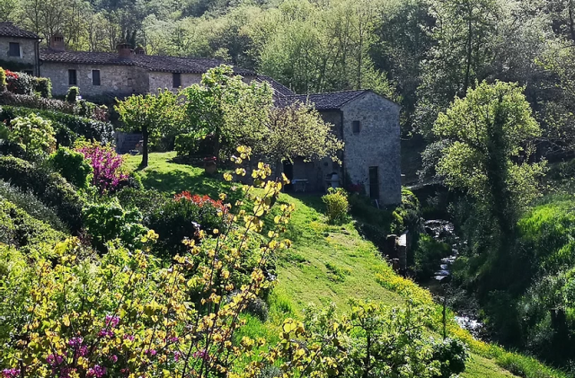 trekking-chianti-castellina-siena