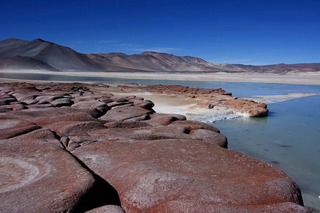 Salar-atacama-deserto-del-cile-viaggi-naturalistici