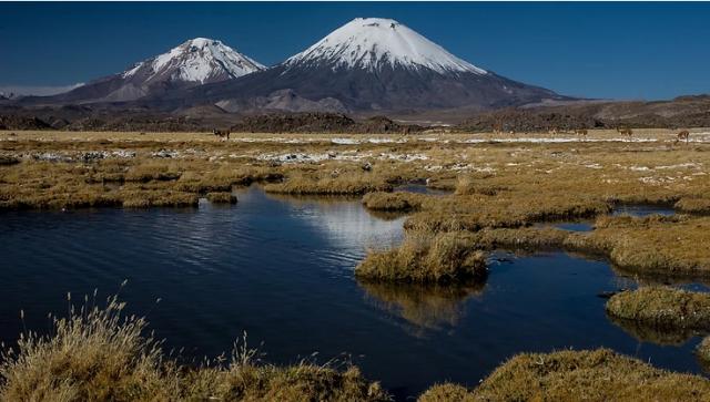 parco-nazionale-lauca-vulcani-deserto-cileno